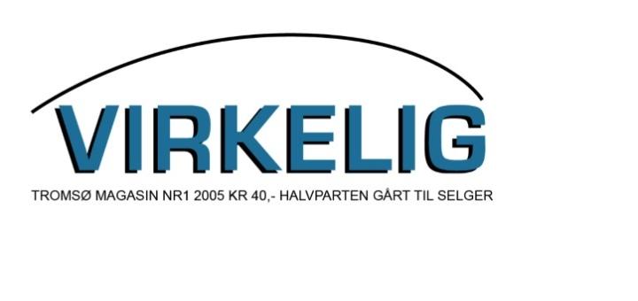 Virkelig_1-05_m_logo (Large)